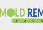 Mold Removal Today - Miami Mold Damage Cleanup Company