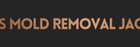 All US Mold Removal Jacksonville FL Mold Remediation Services